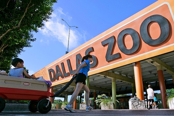 dallas-zoo