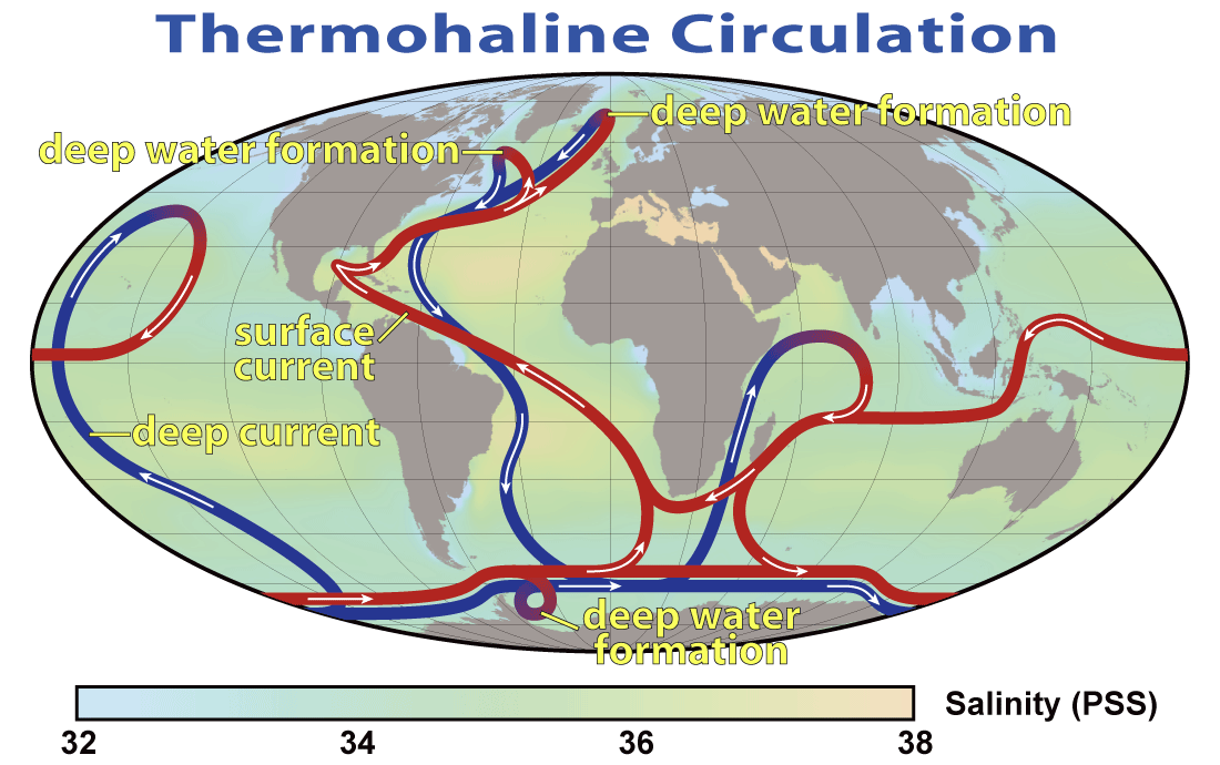 [Image: thermohaline_circulation_2.png]