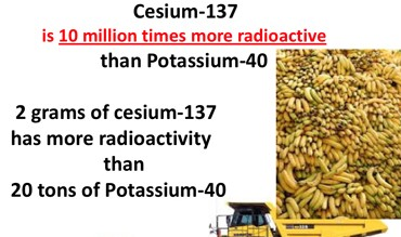 Cesium-137 emits 10 million times more radiation per unit volume than does potassium-40 found in a banana.