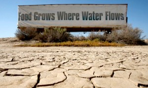 drought-1234