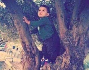 Israeli soldiers attempt to detain 2-year-old for rock-throwing