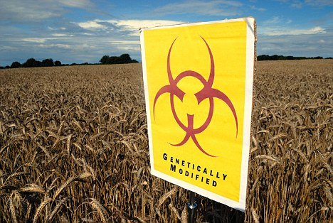 AYBGX1 GM crops biohazard warning