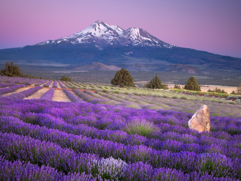 Mount-Shasta-California