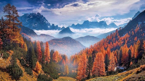 autumn_forest_at_the_alps_italy