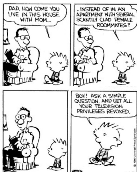 Calvin and Hobbes - Kids