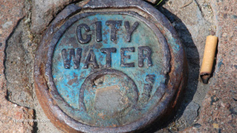City-Water-Valve-Cover-Metal-Fluoride