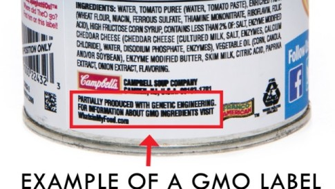 campbells-gmo-label