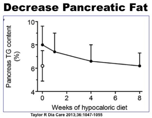 Decrease Pancreatic Fat