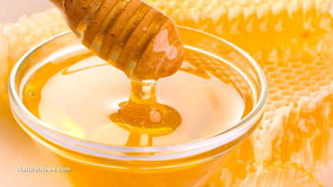 Fresh-Honey