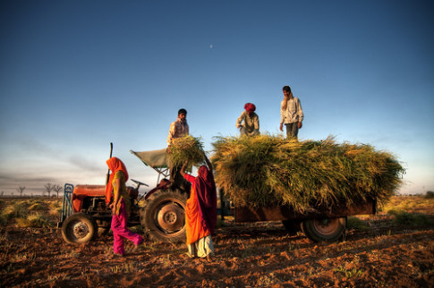 Indian Food and Agriculture Under Attack