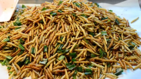 cooked-meal-worms-1024x576