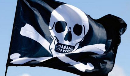 pirate-party-biggest-iceland
