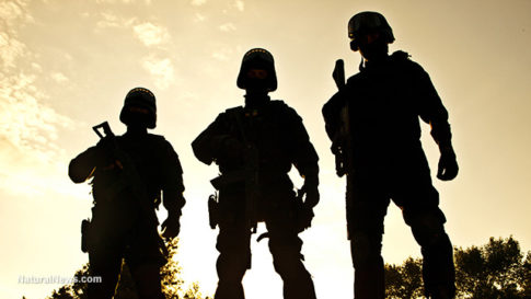 Military-Police-Figures-Sunset