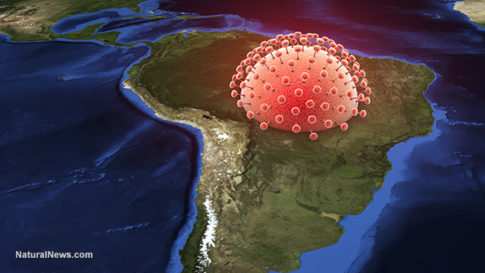 Zika-Virus-South-America