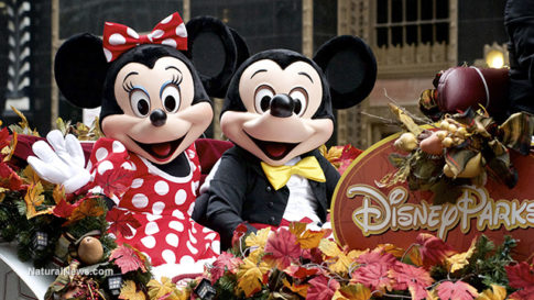 Mickey-And-Minnie-Mouse-Wave-Disneyland