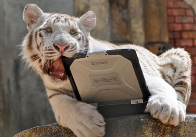 tiger-toughbook