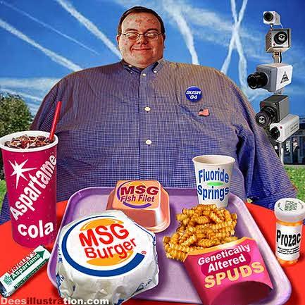 msg-aspartame-gmo