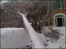 us-snow