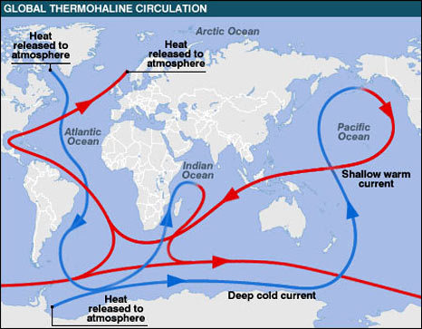 thermohaline-circulation