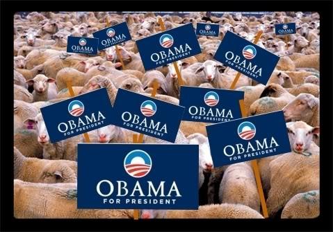 Obama-sheep
