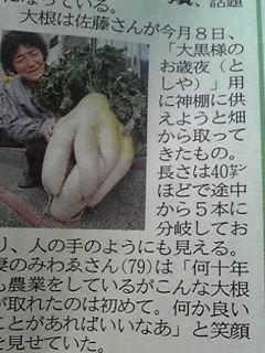 Japan-mutations_02