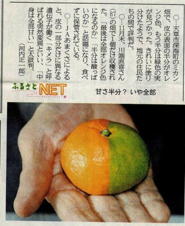 Japan-mutations_03