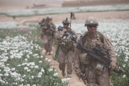 Photos of U.S. and Afghan Troops Patrolling Poppy Fields June 2012-01