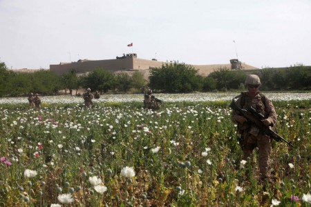 Photos of U.S. and Afghan Troops Patrolling Poppy Fields June 2012-02