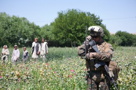 Photos of U.S. and Afghan Troops Patrolling Poppy Fields June 2012-05