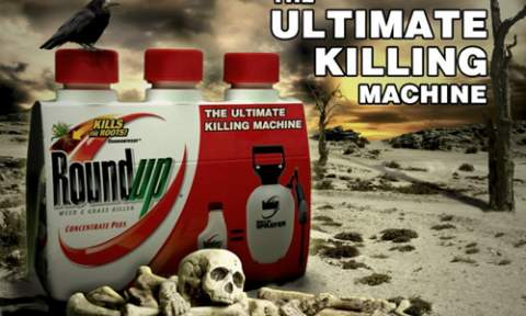 roundup-the-ultimate-killing-machine