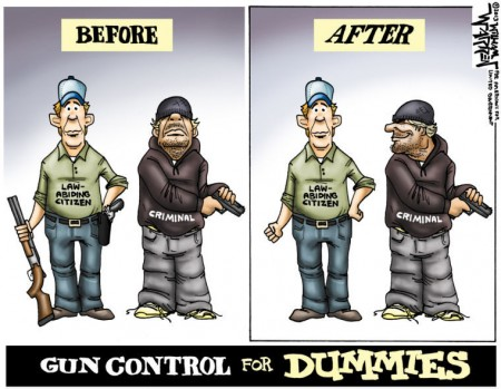 gun-control-for-dummies