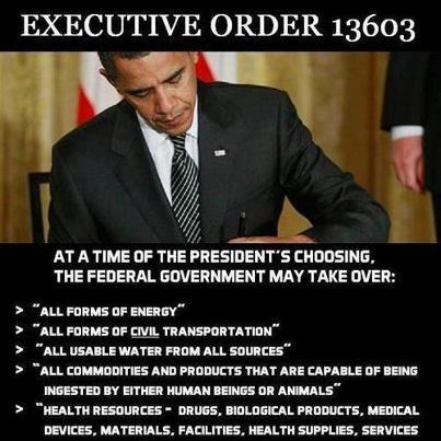 Executive Order 13603