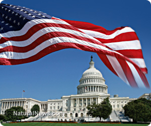 American-Flag-Senate-Government-Building