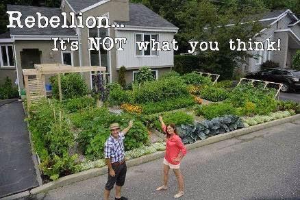 Rebellion-Revolution