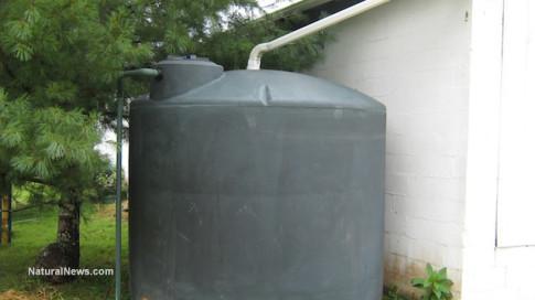 Collecting-Rainwater
