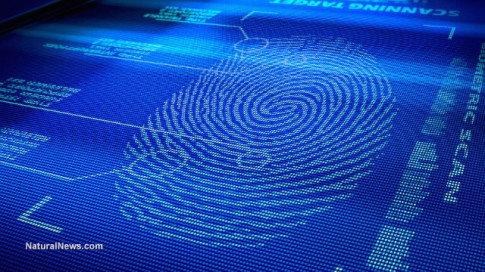 Digital-Fingerprint-Scan-Identity