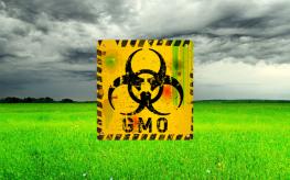 gmo_grass_dark_biohazard