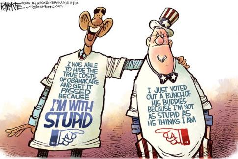obamacare-stupid