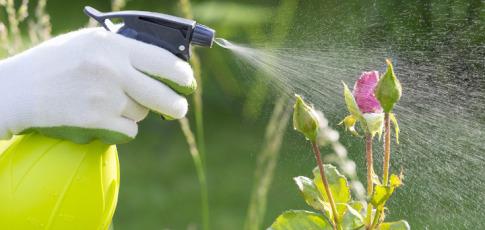 pesticides_bottle