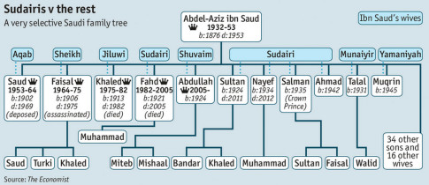 20150113_saudi