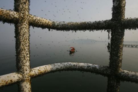 china-pollution-22