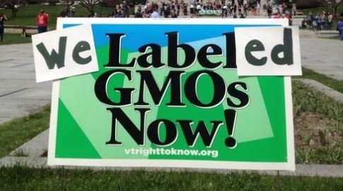 Court Declares Vermonts Genetically Engineered Food Labeling Law Constitutional