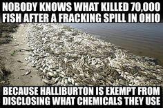 Fracking-Halliburton
