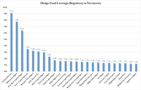 Hedge Fund Leverage
