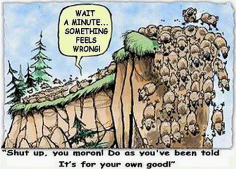 Lemmings Look Like A Pack Of Individualists Compared To Wall Street