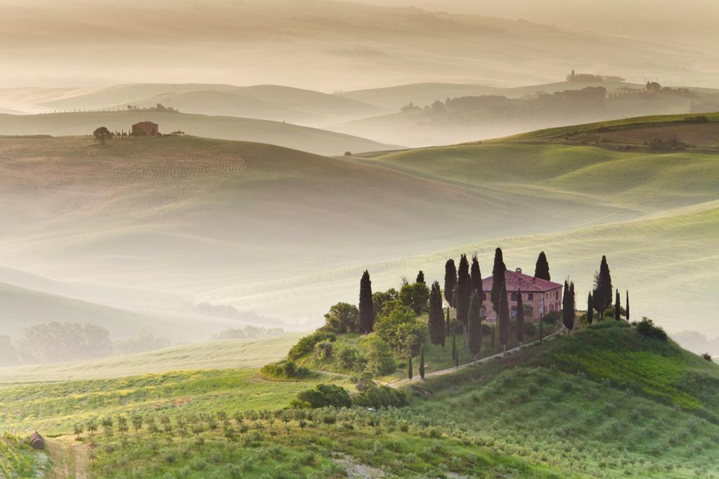 Morning Fog in Tuscany