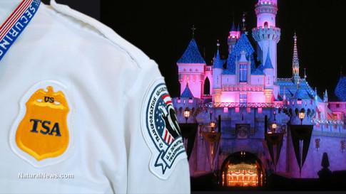 TSA-Agent-Disneyland-Castle