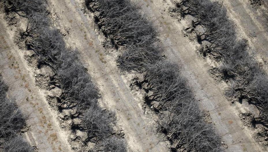 California-Drought-Photos-1