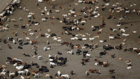 California-Drought-Photos-2