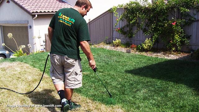 Paint-Grass-LawnLift-2